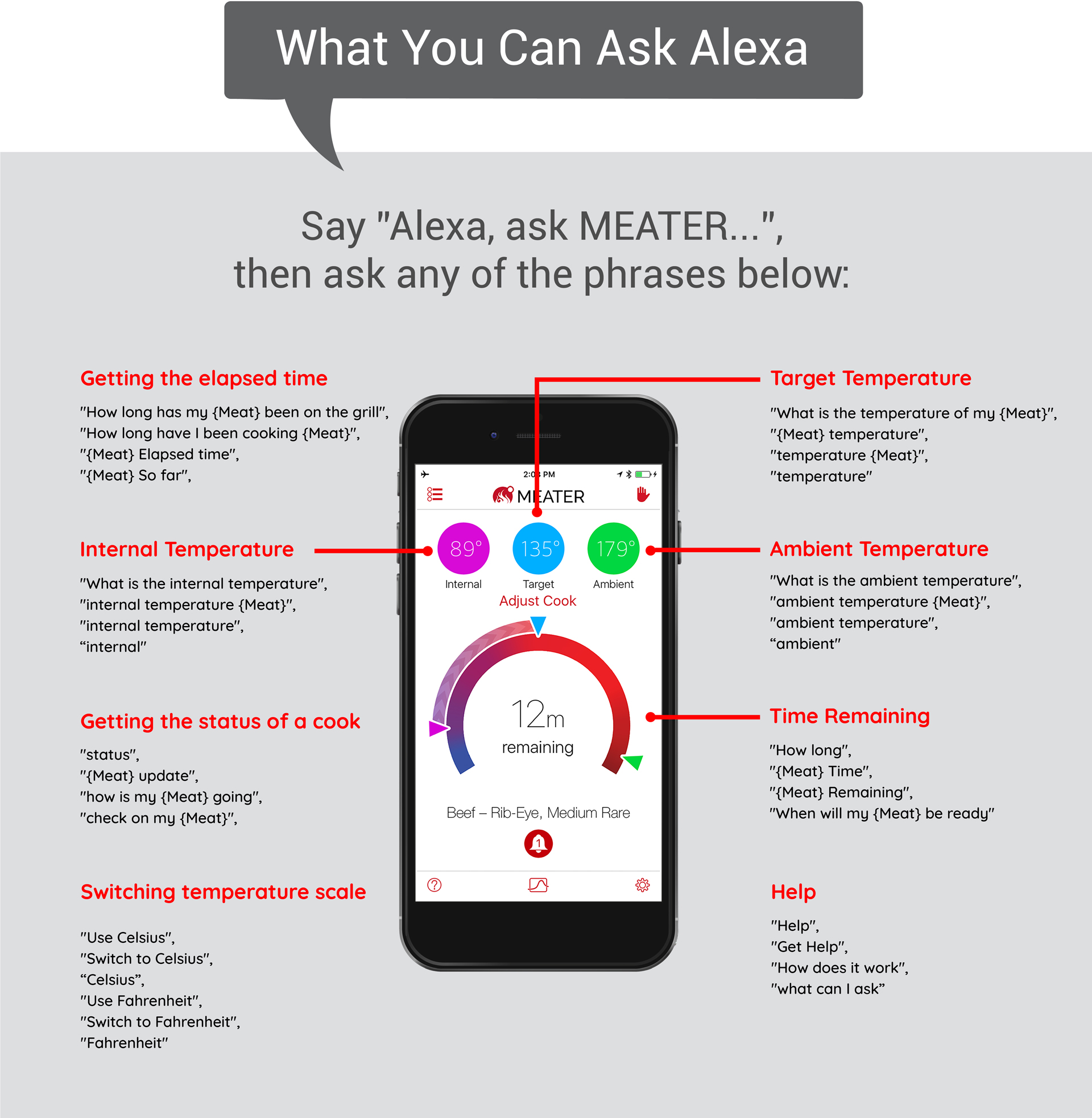 MEATER Alexa Commands – MEATER Blog